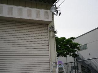 IMGP2606o.JPG