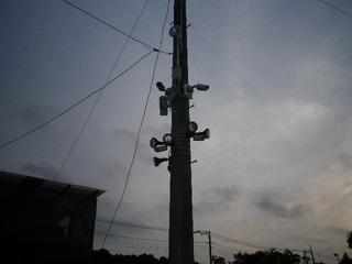 IMGP3084s.JPG
