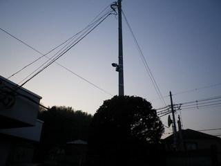 IMGP0350oo.JPG