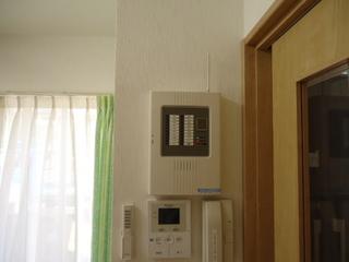 DSC016430530.JPG