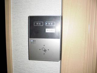 CIMG30801108.JPG
