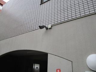 IMG_8164q.JPG